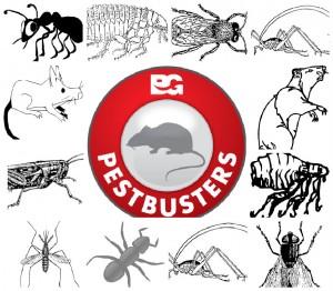 Pest Control Self-Help