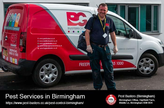 Pest Services Birmingham